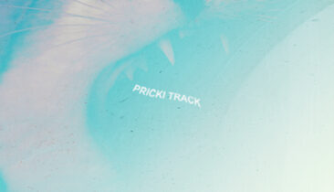 Pricky Track EP cover